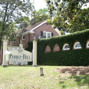 Pepple Hill Plantation